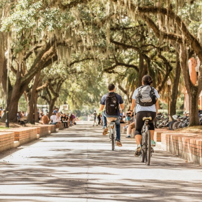 bikes-and-trees